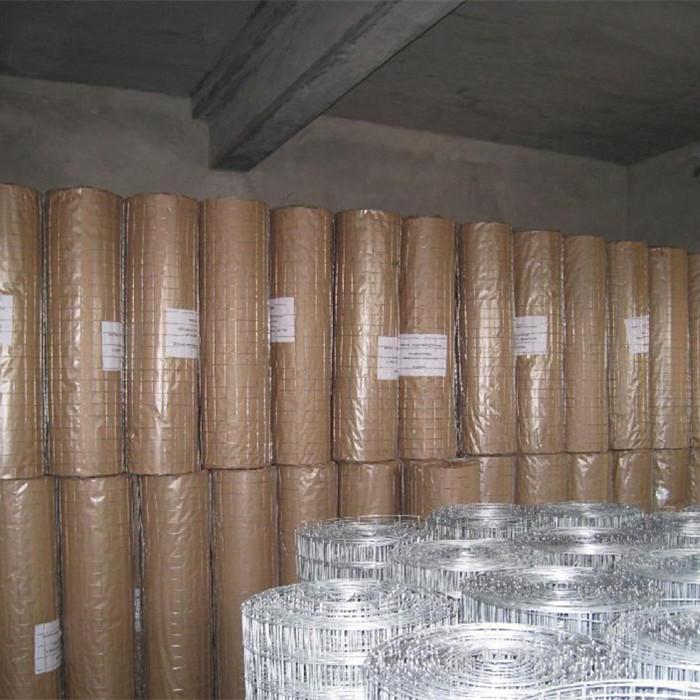 """1"""" x 1""""Galvanized Welded Wire Mesh Rolls"""