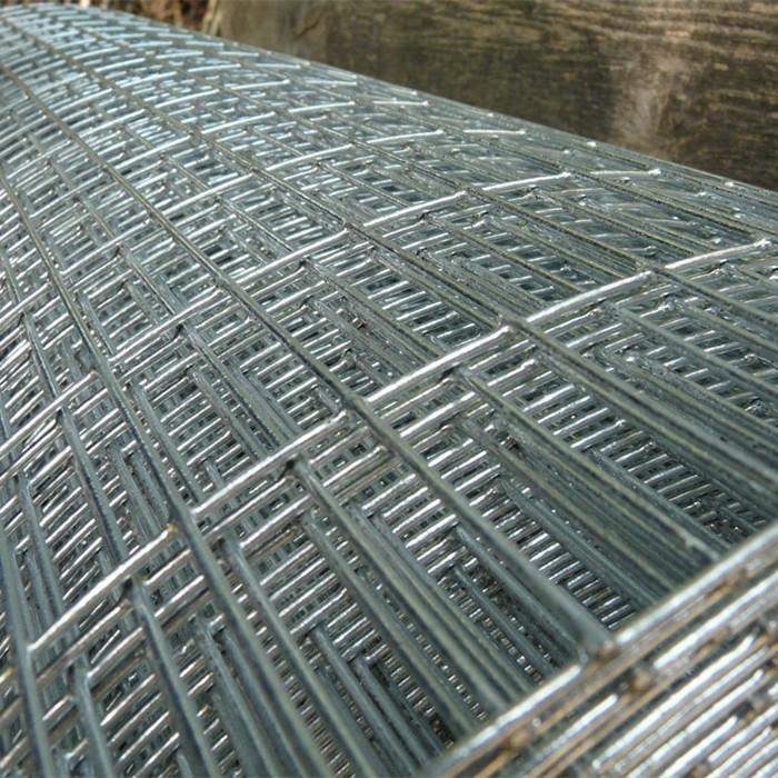 """1""""X 1"""" Galvanized Welded Wire Mesh Rolls"""