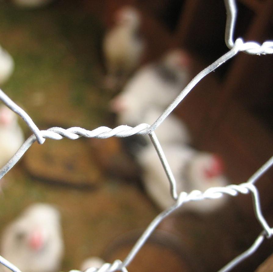 Hexagonal Wire Mesh For Making Farm Fence