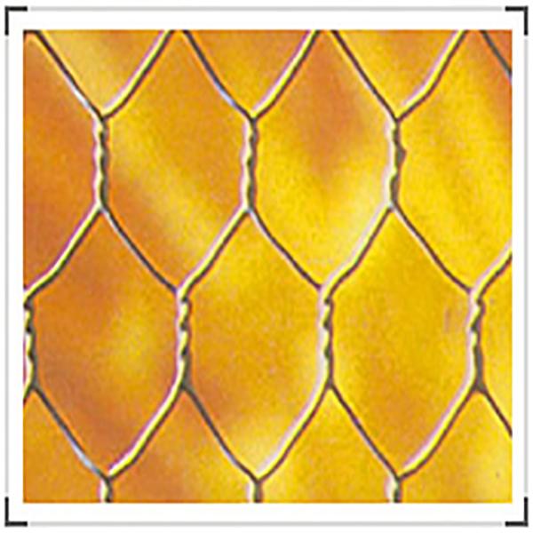 Hexagonal Wire Netting Featured Image